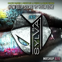 09 - calvin harris & disciples vs tiesto vs older grand - how deep secrets is your love (da sylva mashup)